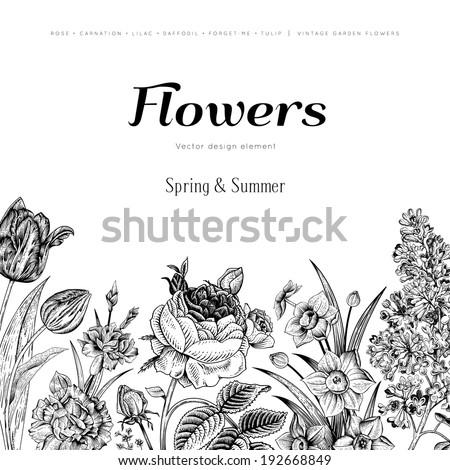 summer floral vintage vector