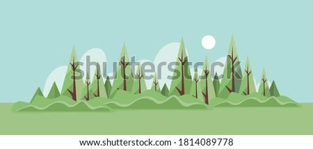 summer forest landscape vector