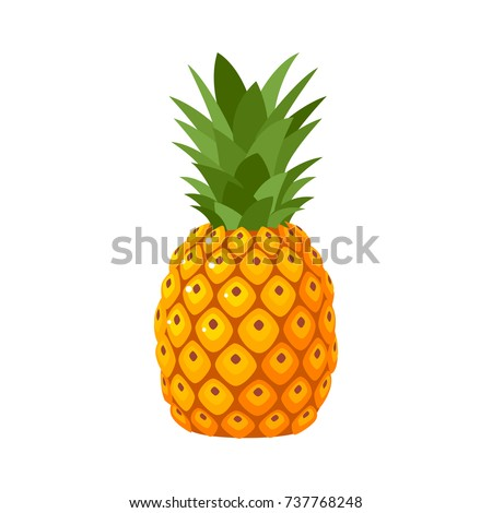 Summer fruits for healthy lifestyle. Pineapple fruit. Vector illustration cartoon flat icon isolated on white. ストックフォト ©