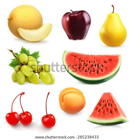 summer fruits  set of vector