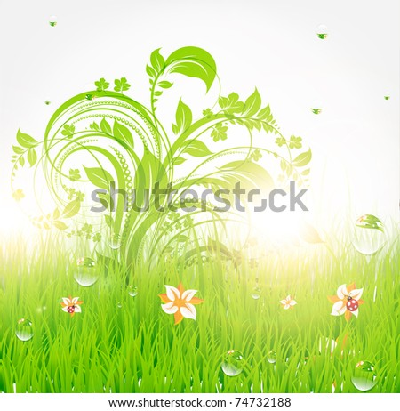 wallpaper summer flower. stock vector : Summer grass