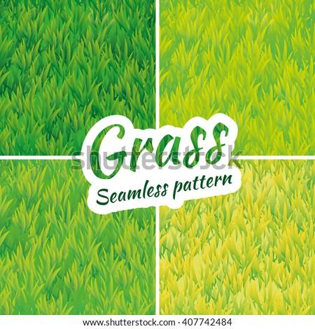 summer green grass texture
