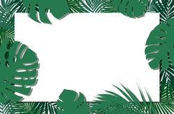 Summer jungle leaves and rectangle square blank frame with copy space on white background. Tropical background with a space for a text. Sale or greeting template.