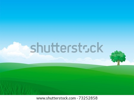 summer landscape of green