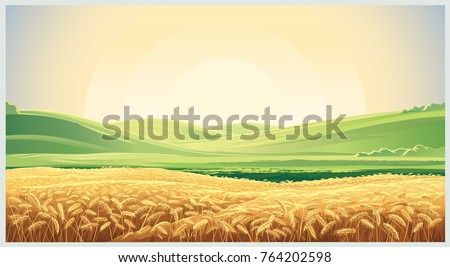 summer landscape with a field...