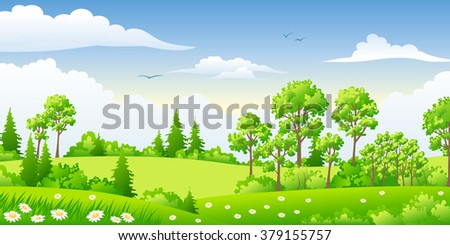 summer landscape with trees