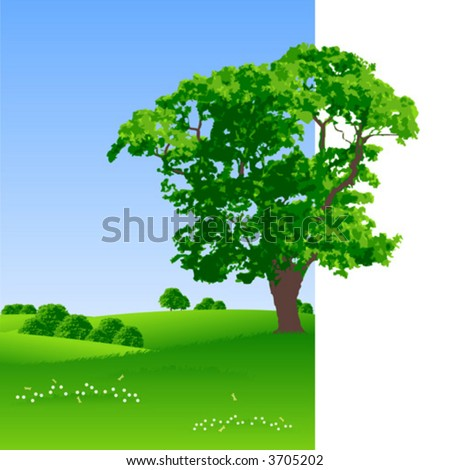 Summer landscape with trees and flowers vector illustration