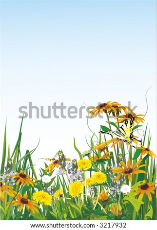 summer meadow with dandelions and butterflies - vector