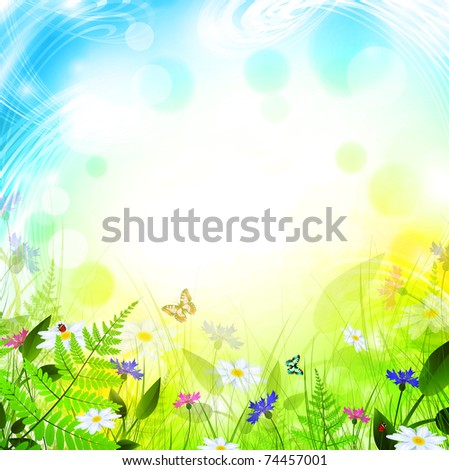 summer meadow with flowers over bright background
