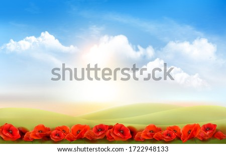 summer nature background with a