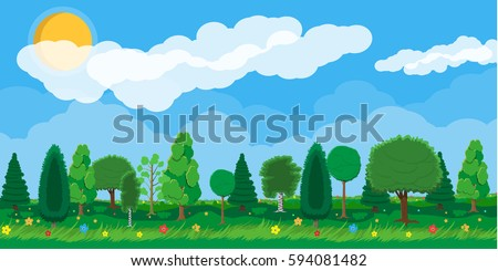 summer nature landscape  forest