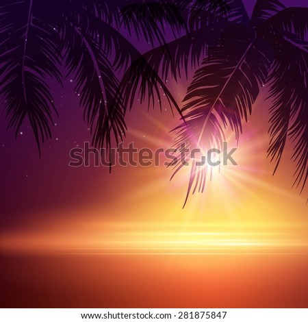 summer night palm trees  in
