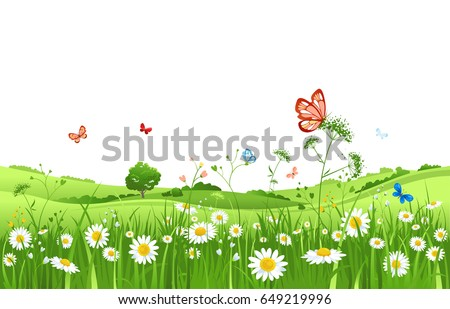 summer or spring landscape for