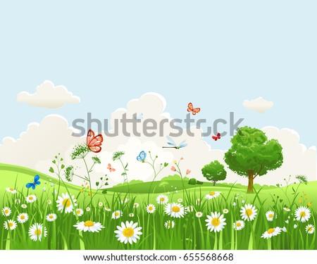 summer or spring landscape for