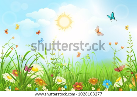 Summer or spring meadow with green grass, flowers and butterflies scenery