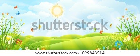 summer or spring sunny meadow