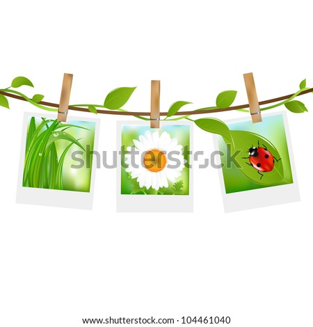 Summer Photos With Clothespins, Isolated On White Background, Vector Illustration