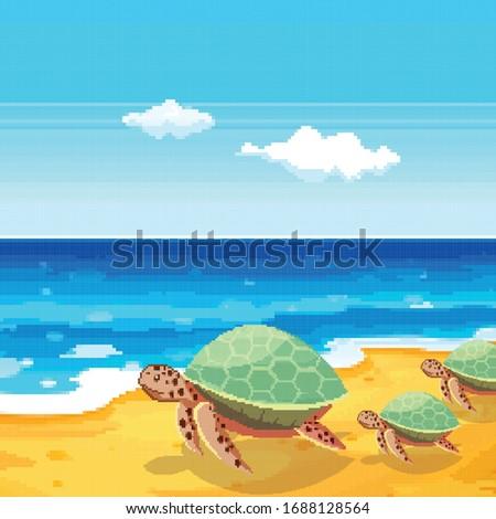 summer pixel turtle on beach