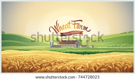 Summer rural landscape, dawn above hills with wheat field and farm. Vector illustration.