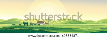 summer rural landscape from