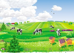 Summer rural landscape with fields, cows and apiary.
