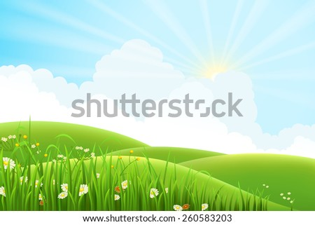 summer sunny meadow landscape