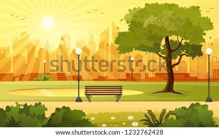 summer sunset city park