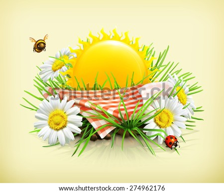 Summer, time for a picnic, nature, outdoor recreation, a tablecloth and sun behind, grass, flowers of camomile, a ladybug and a bee in the garden, vector illustration showing the summertime