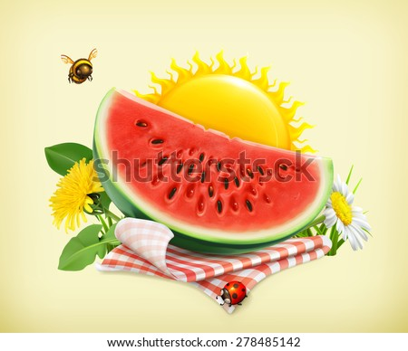 Summer, time for a picnic, watermelon, nature, outdoor recreation, a tablecloth and sun behind, grass, flowers of chamomile and dandelion, vector illustration showing the summertime