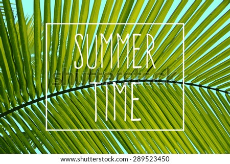 summer time  vector fashion