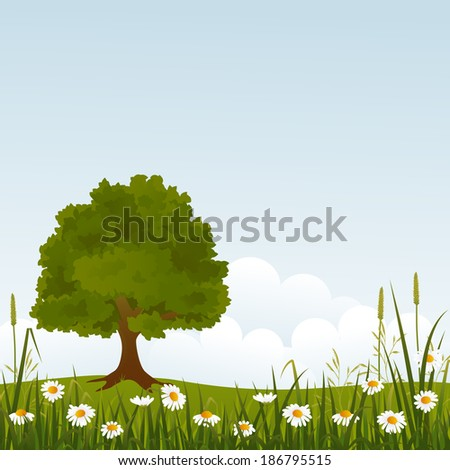 summer tree in field and wild