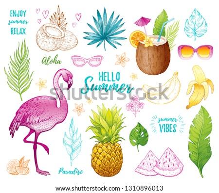 Summer tropic sticker set  for t-shirt print, logo design, print, ca. Vector flamingo, palm leaf, exotic fruit. Hand drawn vintage art. Cool doodle pineapple, watermelon, banana. White background