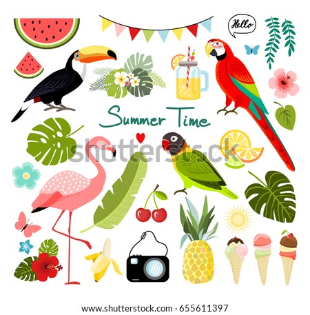 Summer tropical graphic elements. Parrot, toucan and flamingo bird. Jungle floral illustrations, palm leaves, hibiscus, flowers, pineapple,tropical fruits. Vector.