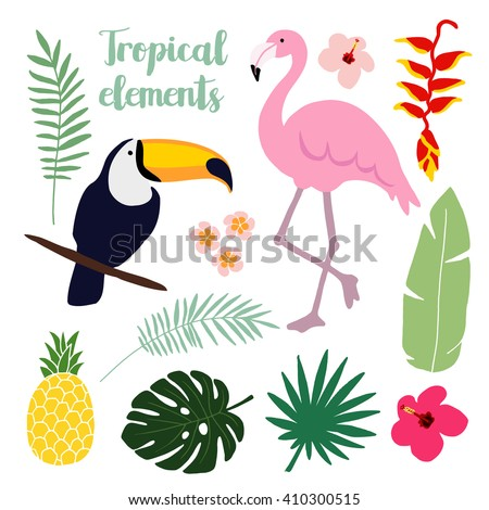 summer tropical graphic