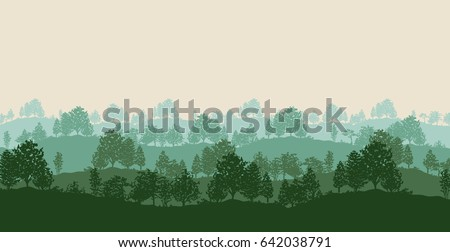 summer twilight forest trees