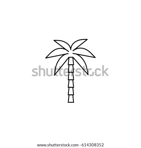 Summer vector line icon of tropical palm tree