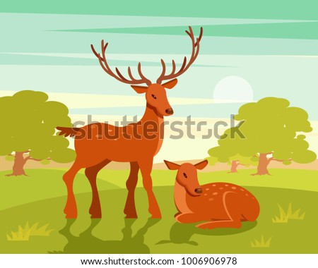 Summer wildlife landscape, couple of deers on green forest background vector Illustration