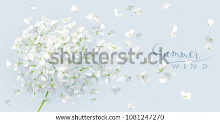 Summer wind - luxurious white vector Hydrangea flower and Apple blossom with flying petals in watercolor style for 8 March, wedding, Valentine\'s Day,  Mother\'s Day, sales and other seasonal events.