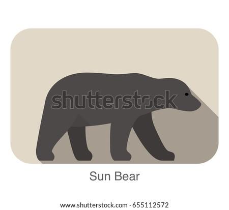 sun bear walking side flat 3d