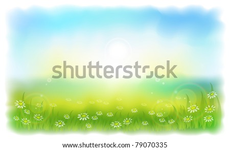 sun drenched meadow with