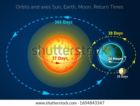 Sun, Earth, Moon. Rotation itself.   Orbits, axes, return times, periods, while. Interplay of Day, night, year, seasons formation. Orbits lines. movements, directions and angles. Annotated Vector