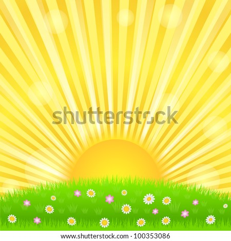 Sunburst and green meadow with flowers, vector eps10 illustration