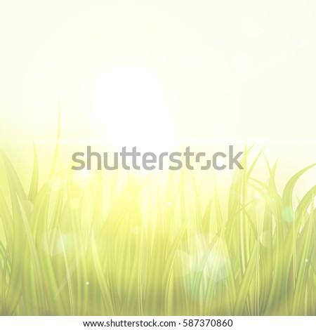 sunburst with sun flare on