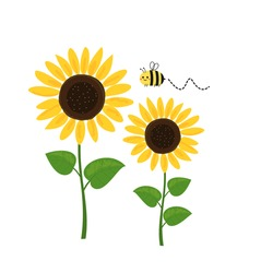 Sunflower and cartoon bee isolated on white background vector illustration.