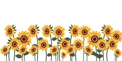 Sunflower and leaves on white background in flat vector.Illustration about sunflower for banner , background and greeting card. eps vector