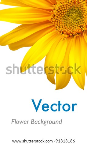 Sunflower background. Vector sun flower brochure layout design