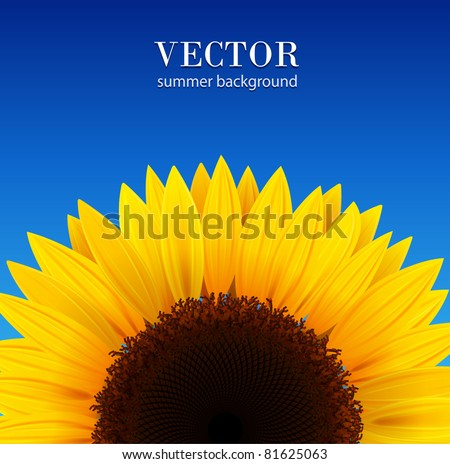 sunflower background with blue