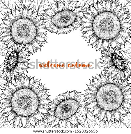 Sunflower frame. Sunflower hand drawn collection. Colorful illustration. Isolated collection. Doodle collection.