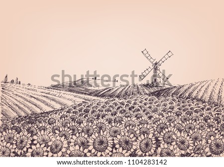 Sunflower hills, artistic landscape, windmill in the background