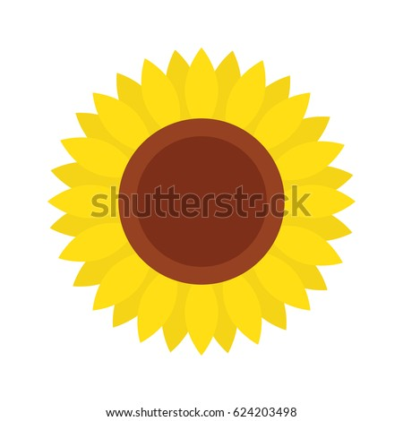sunflower icon  isolated on